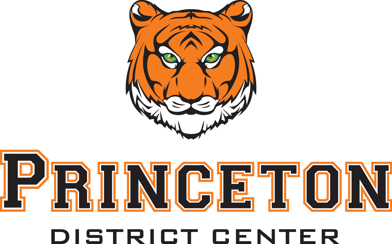 logo file of the colored version for princeton district center
