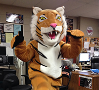 person dancing in the tiger mascot costume